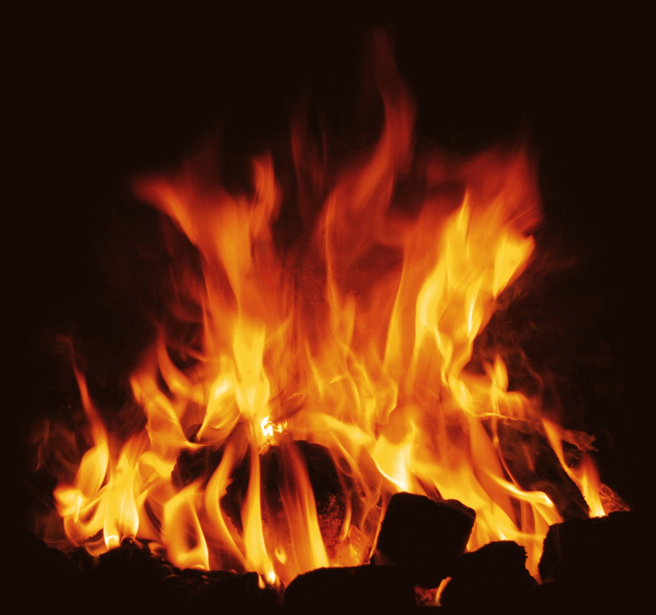 How To Get The Perfect Braai Fire Going
